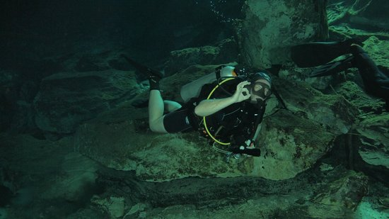 Diversity Diving : Cenote ChacMool