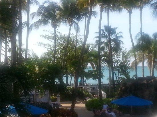 InterContinental San Juan : Beach