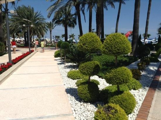Club Med Palmiye: honneur aux jardins