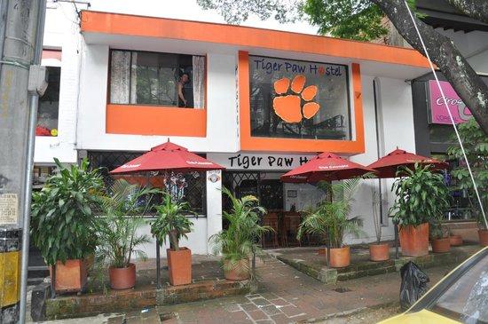 Tiger Hostel : Hostel Tiger Paw