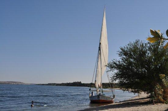 La Maison de Pythagore: La felouque sur le Nil, deux jours inoubliables...