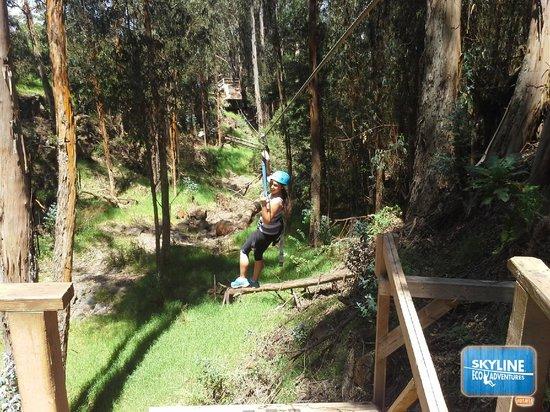 Skyline Eco-Adventures Zipline Tours: Zipline in Haleakala National Park