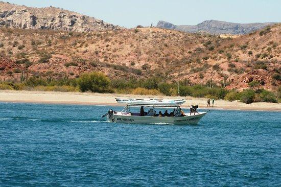 Sea & Adventures: Skiff carrying our kayaks