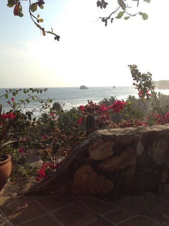 La Loma Linda: Bungalows, Yoga and Feldenkrais : view from either colibri or one of the cabins above that