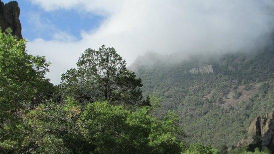 Far Flung Outdoor Center : Clouds over mountains in park
