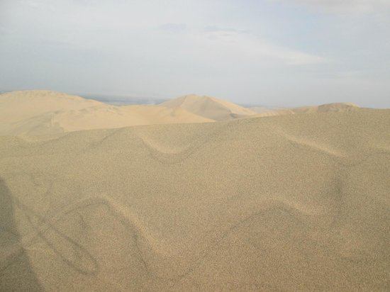 Viajes Paracas : Desierto
