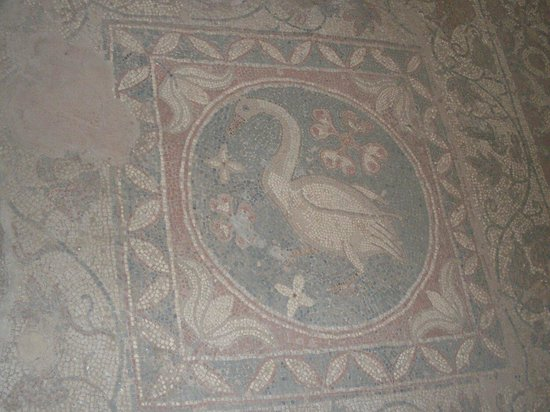 Lefke, ไซปรัส: Soli Bazilikası