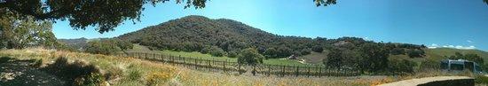 Sustainable Vine Wine Tours: Refugio Ranch