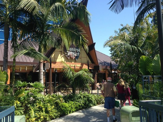 Disneyland Hotel : Tangaroa terrace