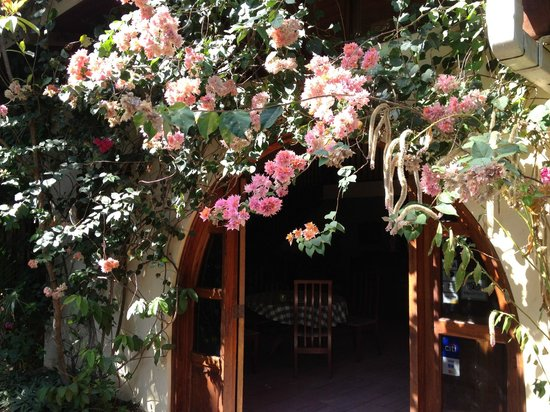 Managua Hills Bed and Breakfast : front entrance