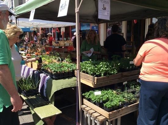 Findlay Market: so many local produce vendors