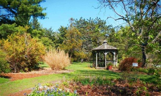 Cylburn Arboretum: Clyburn Arboretum