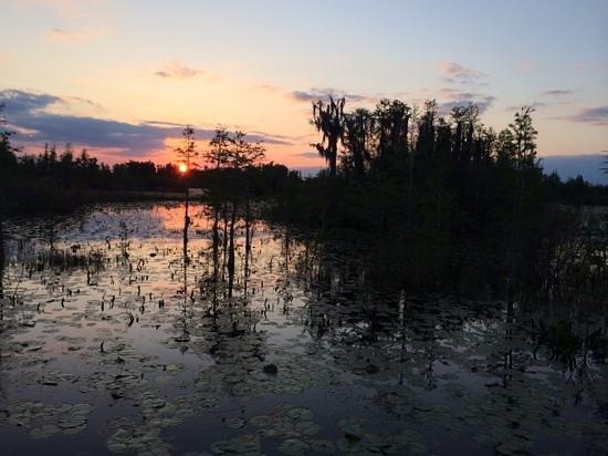 "Okefenokee National Wildlife Refuge : Sunset on the ""prairie"""