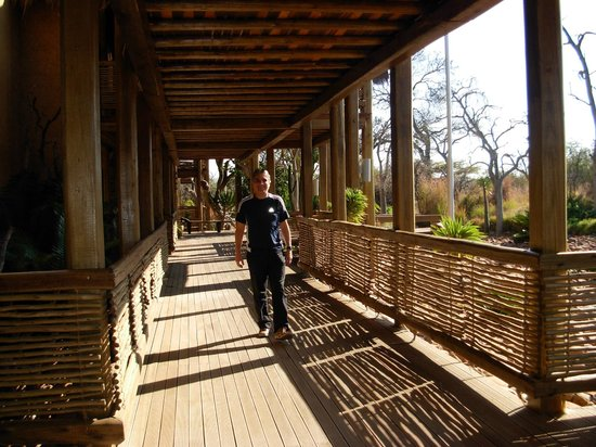 Kapama River Lodge: Corredores