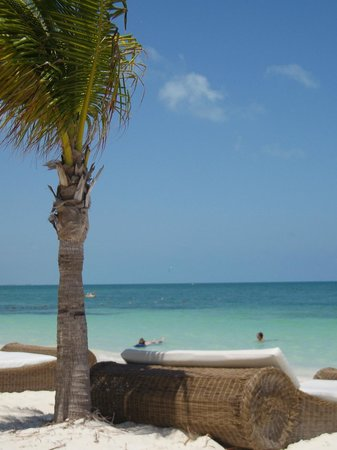 Excellence Playa Mujeres: Relax in the sun, surf & sand!