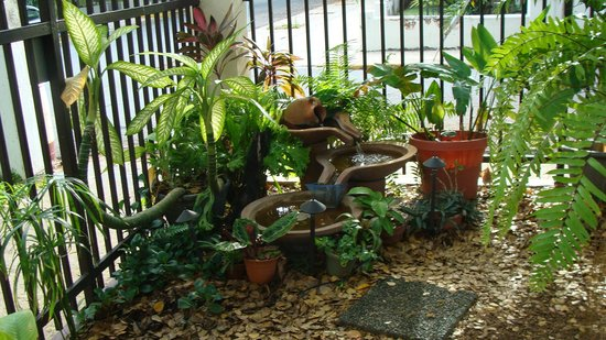 Casa Los Cummins: Water feature