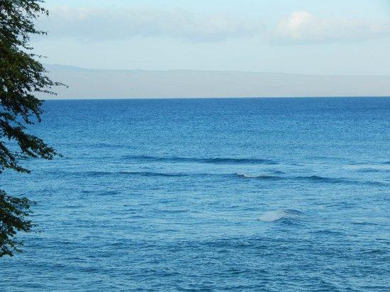 The Kuleana Resort: Lovely ocean views!