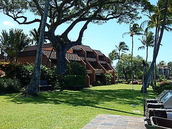 The Kuleana Resort: Grounds are kept in beautiful condition!