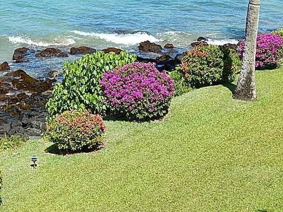 The Kuleana Resort: Grounds are pristine!