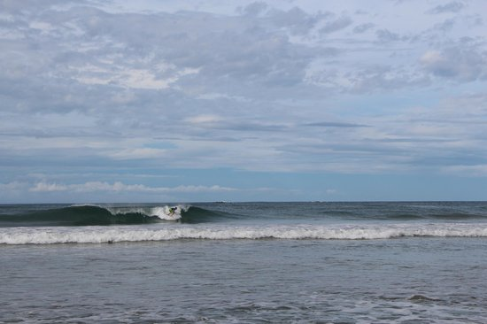 Frijoles Locos Surf Shop & Spa: Dropping in at Playa Grande