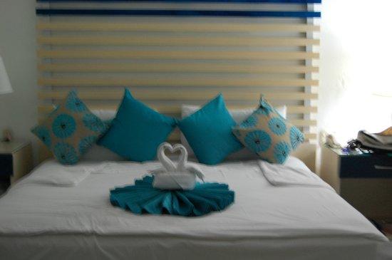 Villa del Palmar Beach Resort & Spa: Lovely swans welcome us