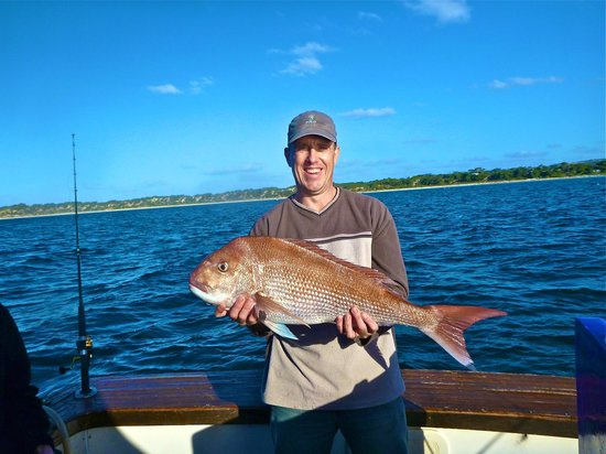 Emu Bay Fishing Charters - Private Charters : I love my Snapper.