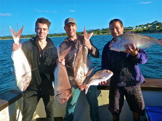 Emu Bay Fishing Charters - Private Charters : Snapper Collection!