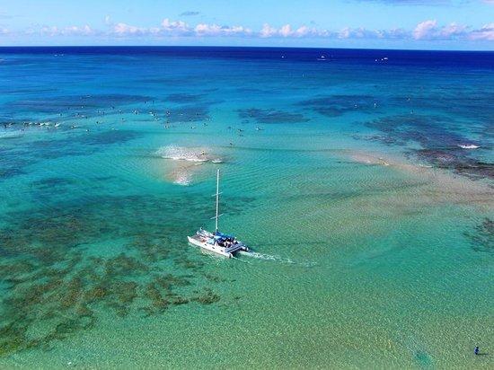 Outrigger Waikiki Beach Resort: 部屋の窓からワイキキの海を見下ろす