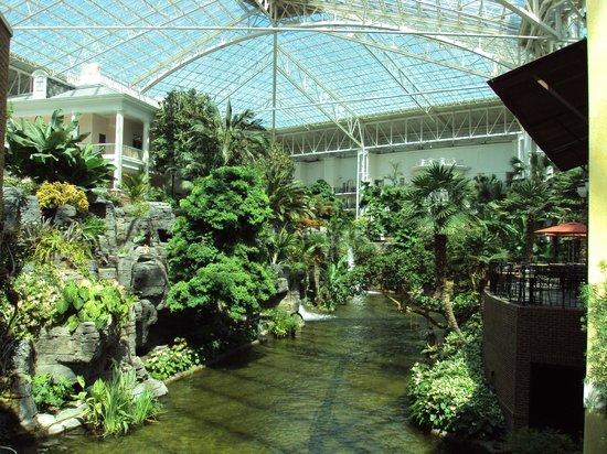 Gaylord Hotel Gardens Picture Of Gaylord Opryland Resort Gardens Nashville Tripadvisor