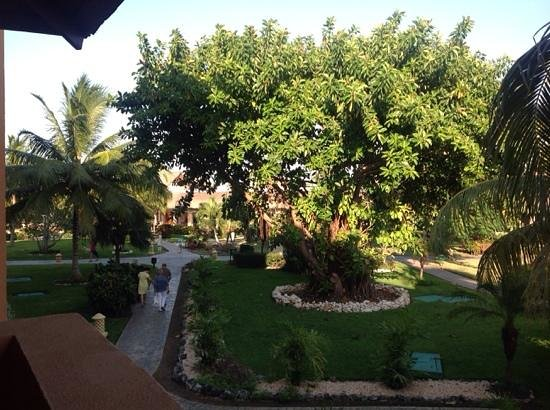Iberostar Varadero : beautiful grounds