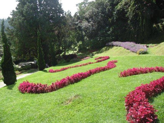 Amantikir: Jardins