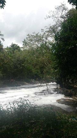 Mindu Park: Rio que corta o parque