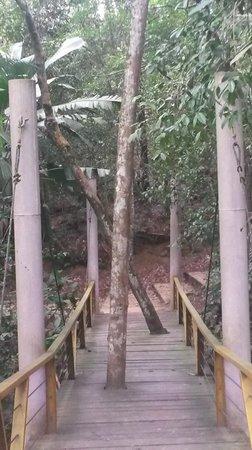 Mindu Park: Muita Natureza