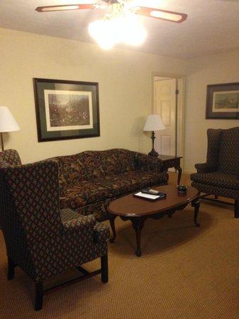 Wyndham Patriots Place: Living room