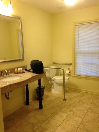 Wyndham Patriots Place: Bathroom