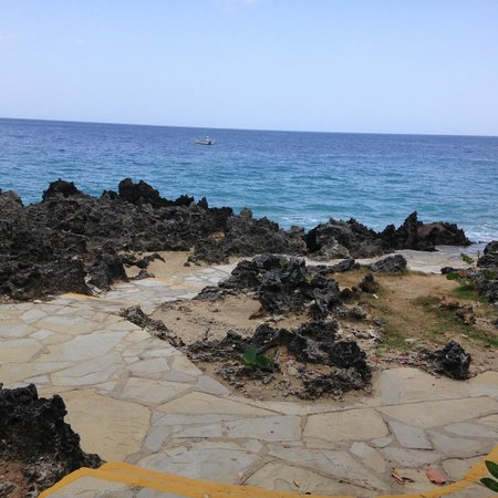 Casa Marina Beach & Reef: Reef