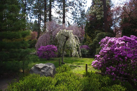 Manito Park: The Japanese Garden