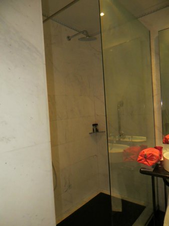 Grand Hotel Palace: The walk-in shower