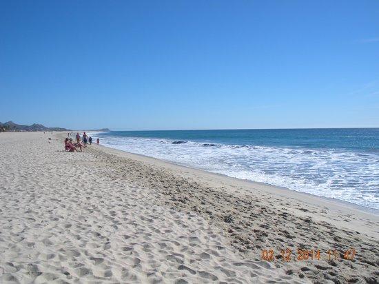 Barcelo Gran Faro Los Cabos : Beach view