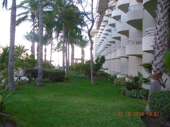 Barcelo Gran Faro Los Cabos : Property gardens