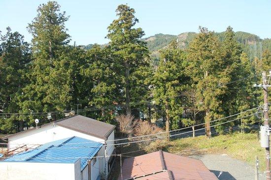 Nikko station hotel classic: Vista para os fundos