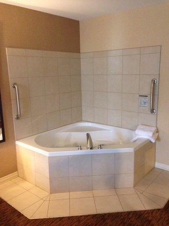Hilton Garden Inn St Louis Airport: Hot Tub Suite