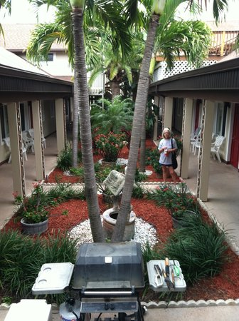 Palm Crest Resort Motel : Courtyard-2