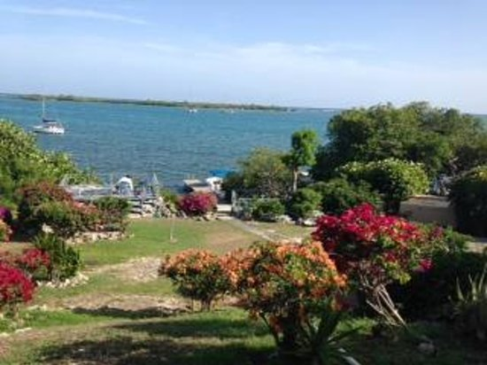 Mary Lee's by the Sea: ALEGRE's backyard view :)