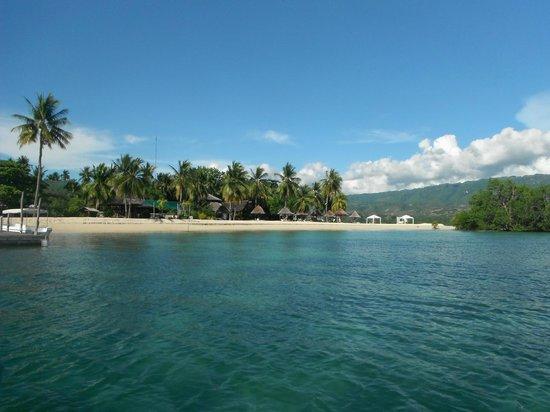 Badian Island Wellness Resort: view of badian island