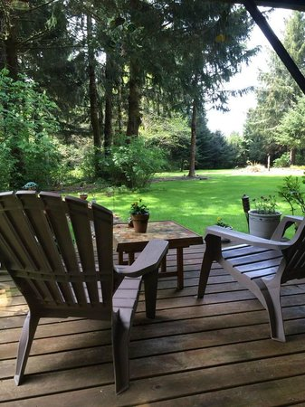 Cape Lookout Bed n Breakfast: Back porch at the Bed and Breakfast
