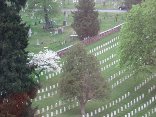 Alexandria National Cemetery : Springtime view from 8th floor across the street