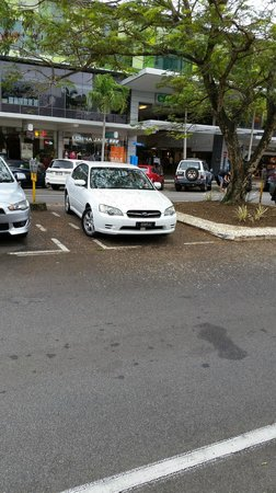 Mantra Esplanade Cairns : Don't park under trees