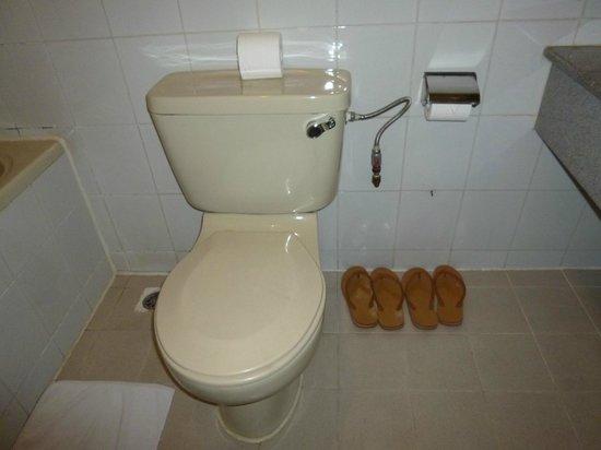 Asian Hotel: トイレ