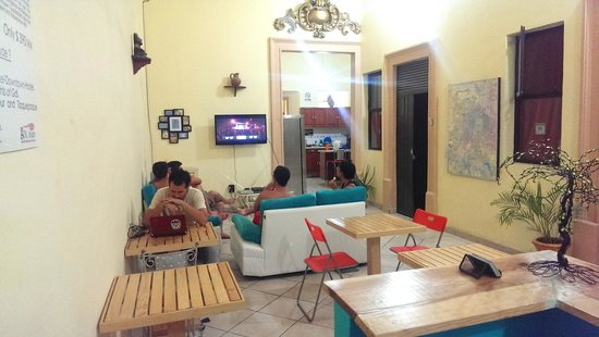 Blue Pepper Downtown Guadalajara: Cable TV